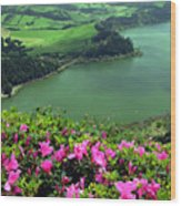 Furnas Lake Azores Wood Print