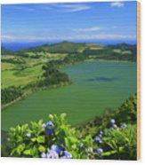 Furnas Lake Wood Print