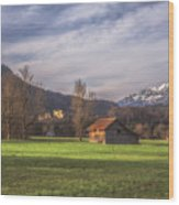 Fussen Mountain Scene Wood Print