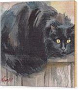 Fuzzy Black Cat Wood Print