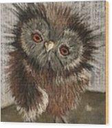 Fuzzy Owl Wood Print