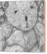 Fuzzy Wuzzy Bear  Wood Print