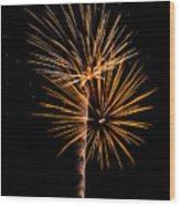 Fwsc 2014-10 Wood Print