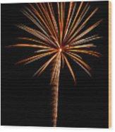 Fwsc 2014-19 Wood Print