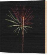 Fwsc 2014-26 Wood Print