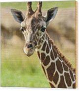 G Is For Giraffe Wood Print