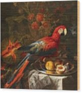 Gabriello Salci  Fruit Still Life With A Parrot Wood Print