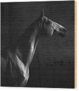 Gagur Wood Print