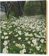 Gaia Blooming Wood Print