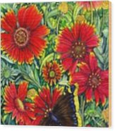 Gaillardia Wood Print
