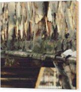 Gainsborough Central Train Station Wood Print