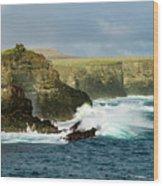 Cliffs At Suarez Point, Espanola Island Of The Galapagos Islands Wood Print