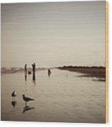 Galveston Seagulls Wood Print