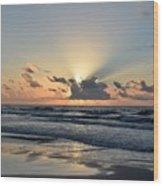 Galveston Tx 339 Wood Print