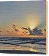 Galveston Tx 343 Wood Print