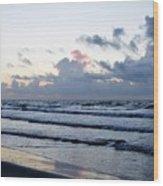 Galveston Tx 347 Wood Print