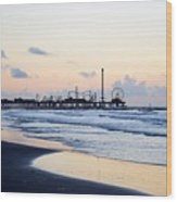 Galveston Tx 348 Wood Print