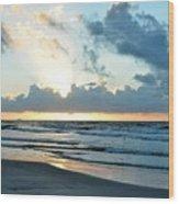 Galveston Tx 360 Wood Print