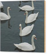Galway Swans On The Claddagh Wood Print