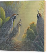 Gambel's Quail - Early Light Wood Print