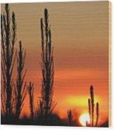Gambier Sunset Wood Print