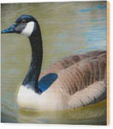 Gander At A Goose Wood Print