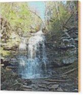 Ganoga Falls 3 - Ricketts Glen Wood Print
