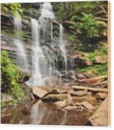 Ganoga Falls Ricketts Glen Wood Print