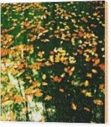 In The Gap Wood Print