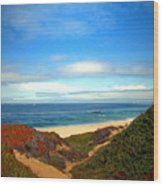 Garapata State Park South Of Monterey Ca Seven Wood Print