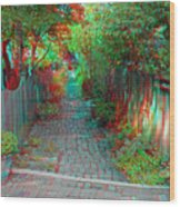 Garden Alley - Use Red-cyan 3d Glasses Wood Print