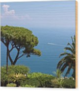 Garden And Bay Of Naples Wood Print