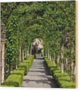 Garden Arbor Path Wood Print
