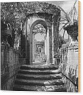 Garden Arches Of Vizcaya - Black And White Wood Print