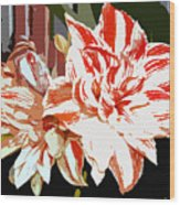 Garden Beauty Work Number 30 Wood Print
