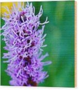 Garden Blooms Wood Print