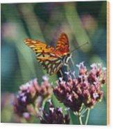 Garden Butterfly Wood Print