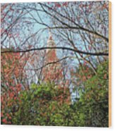 Garden By The Tokyo Tower Wood Print