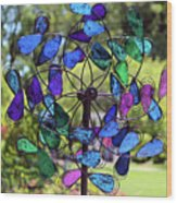 Garden Colored Fan Wood Print
