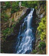 Garden Creek Falls Wood Print