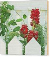 Garden Fence - Key West Wood Print