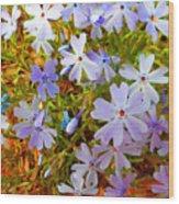 Flower Photography- Floral Art- Digital-floral Fireworks Wood Print