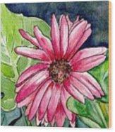 Garden Flower Wood Print