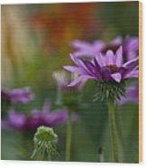 Garden Flowers 2 Wood Print