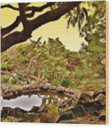 Garden For The Ones Of Flight - Deep Cut Gardens Wood Print