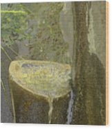 Garden Fountain Wood Print