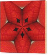 Garden Glass Orb Kaleidoscope Abstract Wood Print