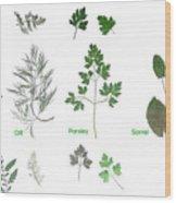 Garden Herbs Wood Print