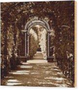 Garden Hollow  Wood Print