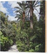 Garden In Menton Wood Print